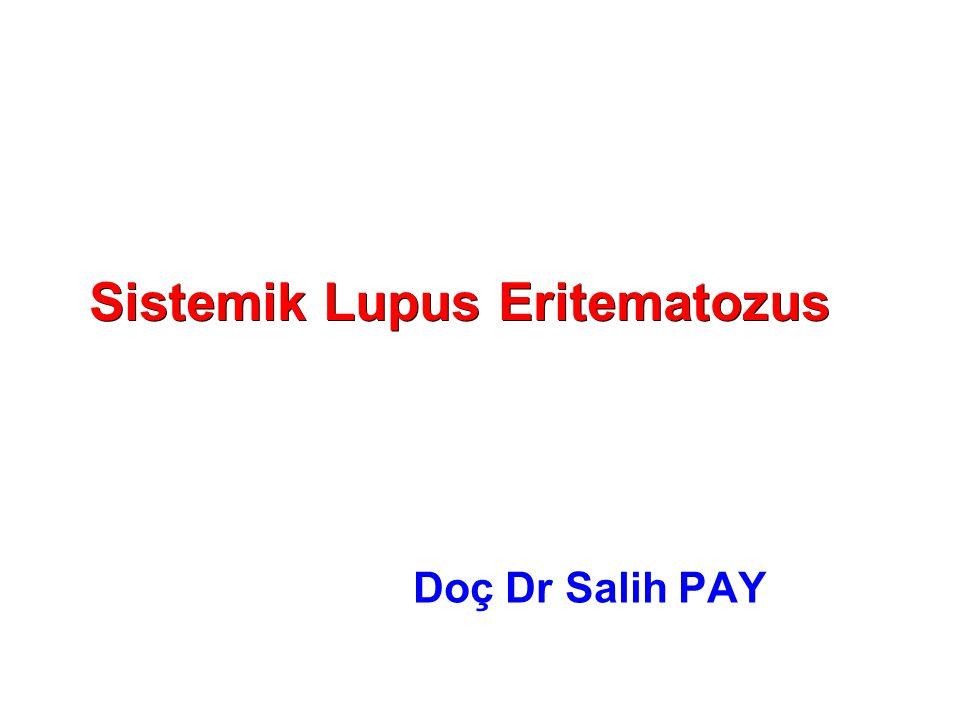 Sistemik Lupus Eritematozus