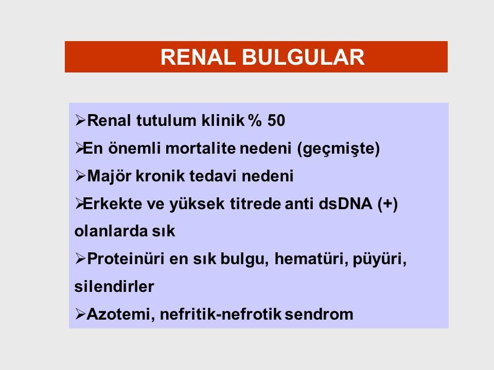 RENAL BULGULAR Renal tutulum klinik % 50