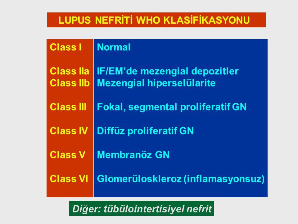 LUPUS NEFRİTİ WHO KLASİFİKASYONU