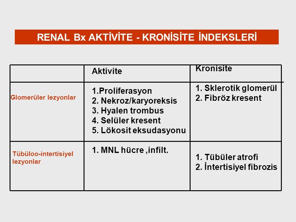 RENAL Bx AKTİVİTE - KRONİSİTE İNDEKSLERİ
