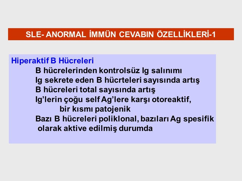 SLE- ANORMAL İMMÜN CEVABIN ÖZELLİKLERİ-1
