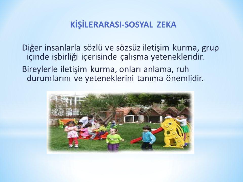 KİŞİLERARASI-SOSYAL ZEKA Diğer insanlarla sözlü ve sözsüz iletişim kurma, grup içinde işbirliği içerisinde çalışma yetenekleridir.