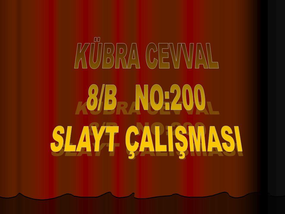 KÜBRA CEVVAL 8/B NO:200 SLAYT ÇALIŞMASI