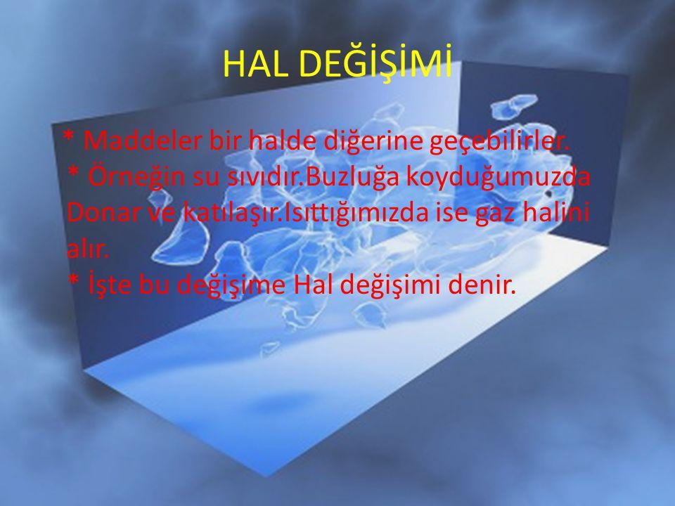 HAL DEĞİŞİMİ