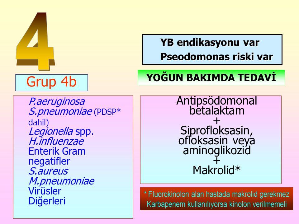 4 YB endikasyonu var. Pseodomonas riski var. YOĞUN BAKIMDA TEDAVİ. Grup 4b.