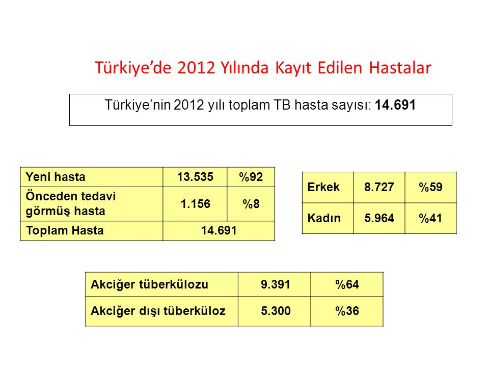 Türkiye'nin 2012 yılı toplam TB hasta sayısı: 14.691