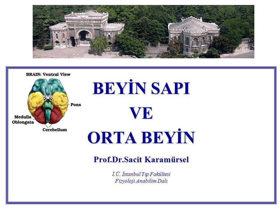BEYİN SAPI VE. ORTA BEYİN Prof.Dr.Sacit Karamürsel İ.Ü.