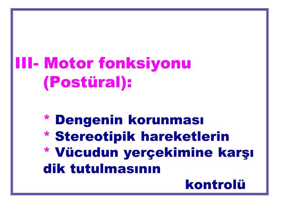 III- Motor fonksiyonu. (Postüral):. Dengenin korunması
