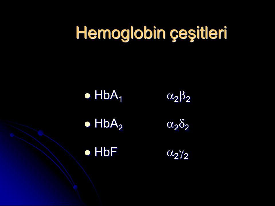 Hemoglobin çeşitleri HbA1 a2b2 HbA2 a2d2 HbF a2g2