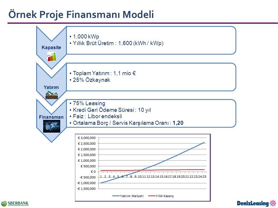 Örnek Proje Finansmanı Modeli