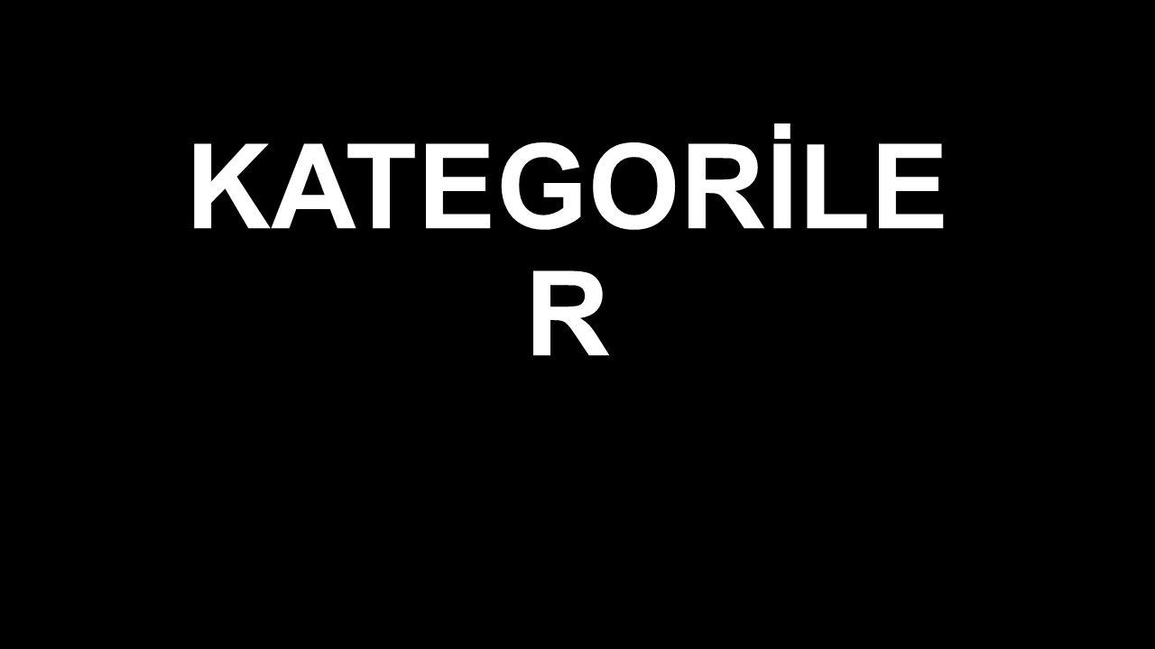 KATEGORİLER