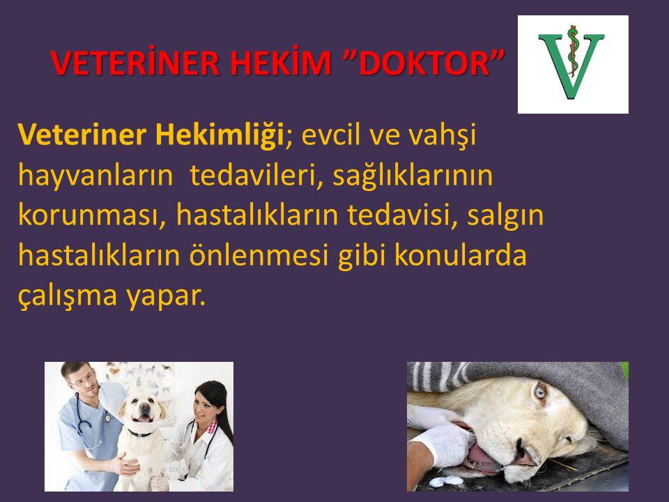 VETERİNER HEKİM DOKTOR