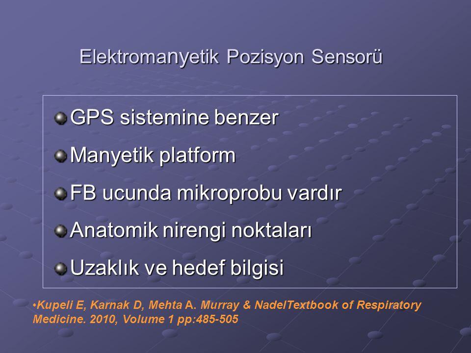 Elektromanyetik Pozisyon Sensorü