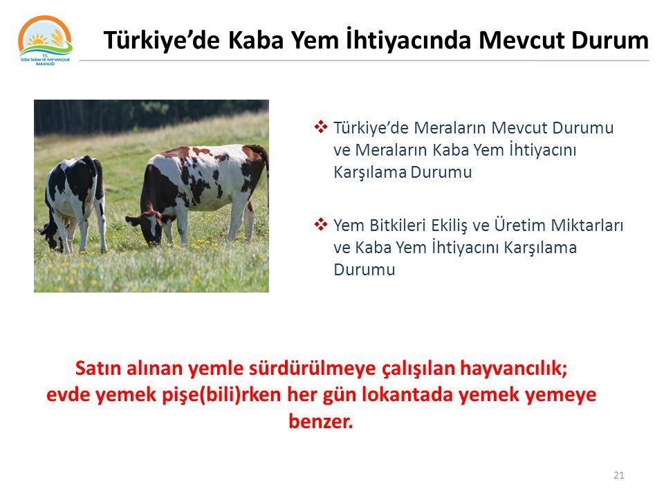 Türkiye'de Kaba Yem İhtiyacında Mevcut Durum