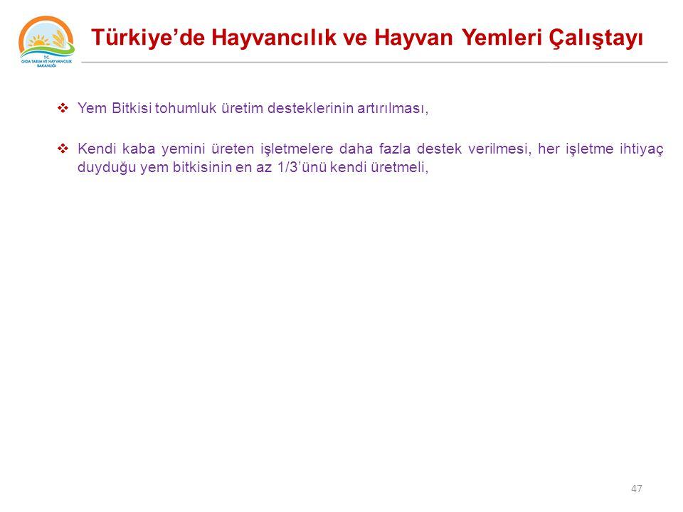 Türkiye'de Hayvancılık ve Hayvan Yemleri Çalıştayı