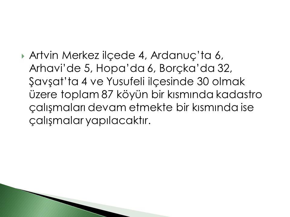 Artvin Merkez ilçede 4, Ardanuç'ta 6, Arhavi'de 5, Hopa'da 6, Borçka'da 32, Şavşat'ta 4 ve Yusufeli ilçesinde 30 olmak üzere toplam 87 köyün bir kısmında kadastro çalışmaları devam etmekte bir kısmında ise çalışmalar yapılacaktır.