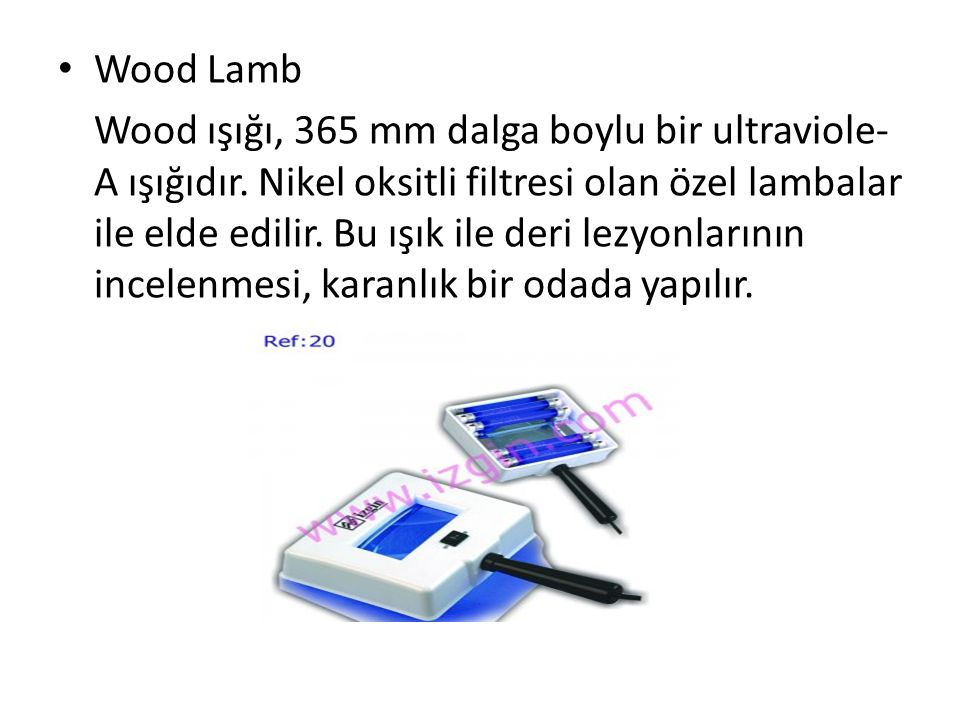 Wood Lamb