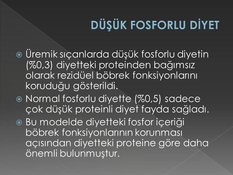 DÜŞÜK FOSFORLU DİYET