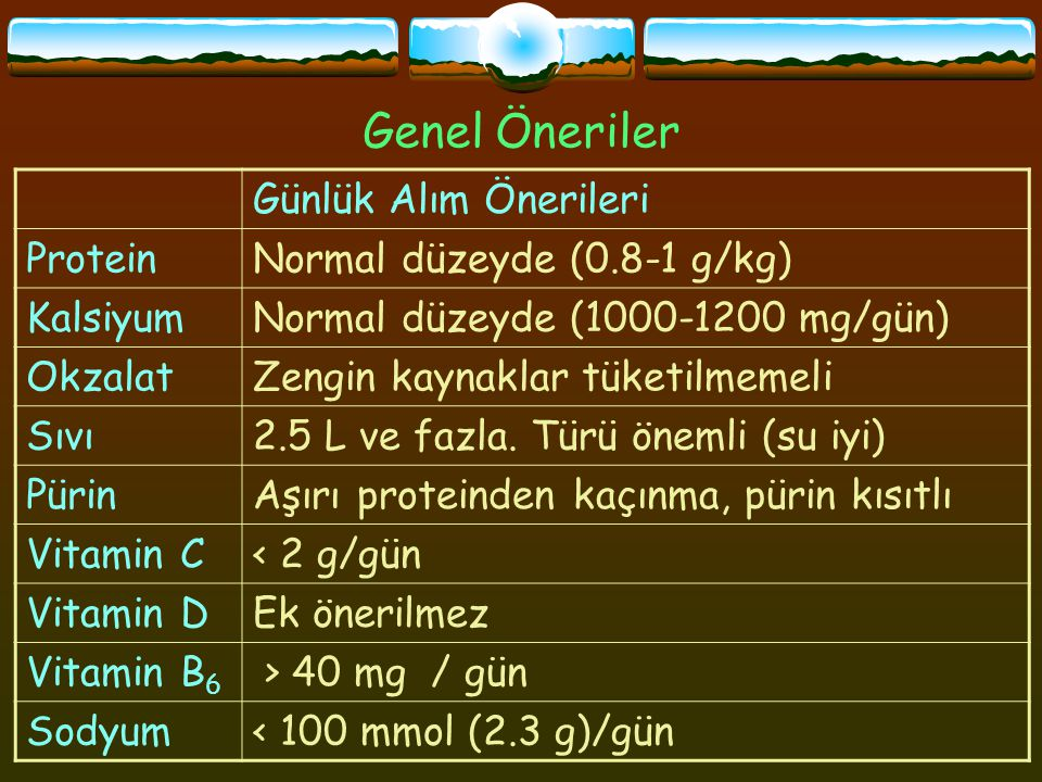 Genel Öneriler Günlük Alım Önerileri Protein