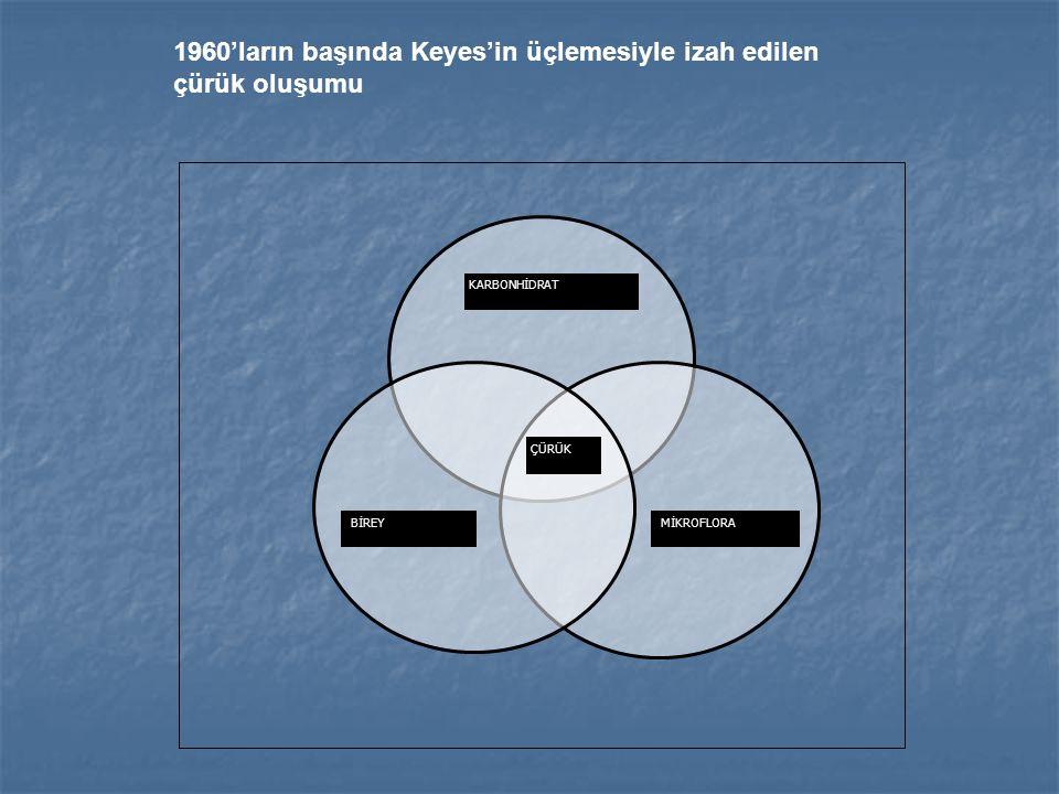 1960'ların başında Keyes'in üçlemesiyle izah edilen çürük oluşumu