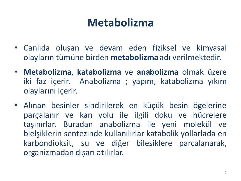 Metabolizma Canlıda oluşan ve devam eden fiziksel ve kimyasal olayların tümüne birden metabolizma adı verilmektedir.