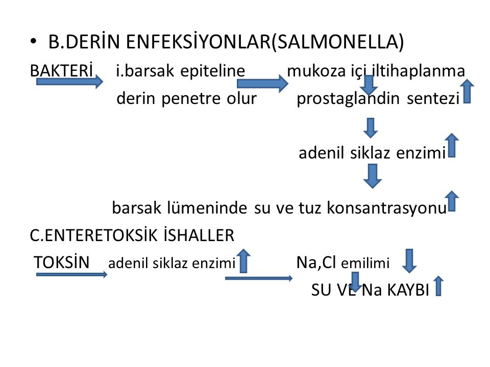 B.DERİN ENFEKSİYONLAR(SALMONELLA)
