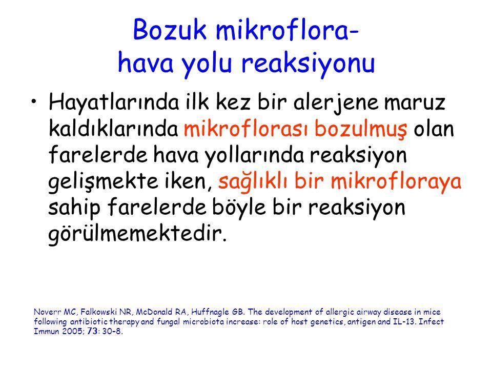 Bozuk mikroflora- hava yolu reaksiyonu
