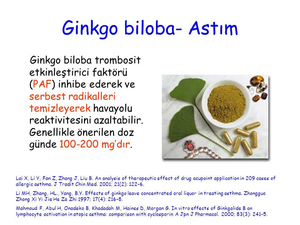 Ginkgo biloba- Astım