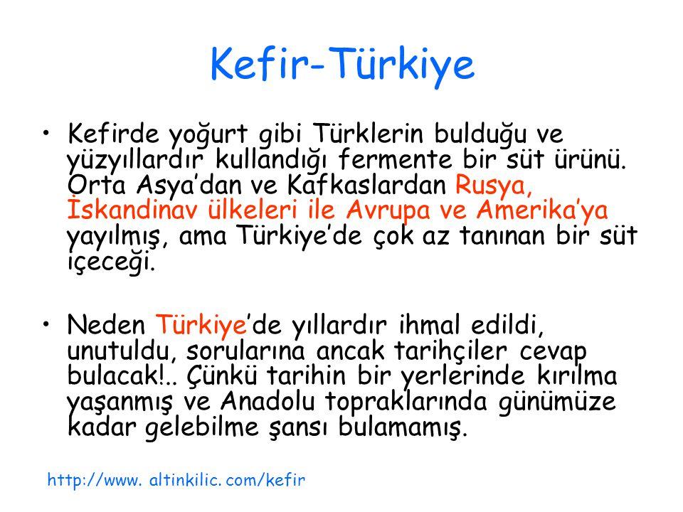 Kefir-Türkiye