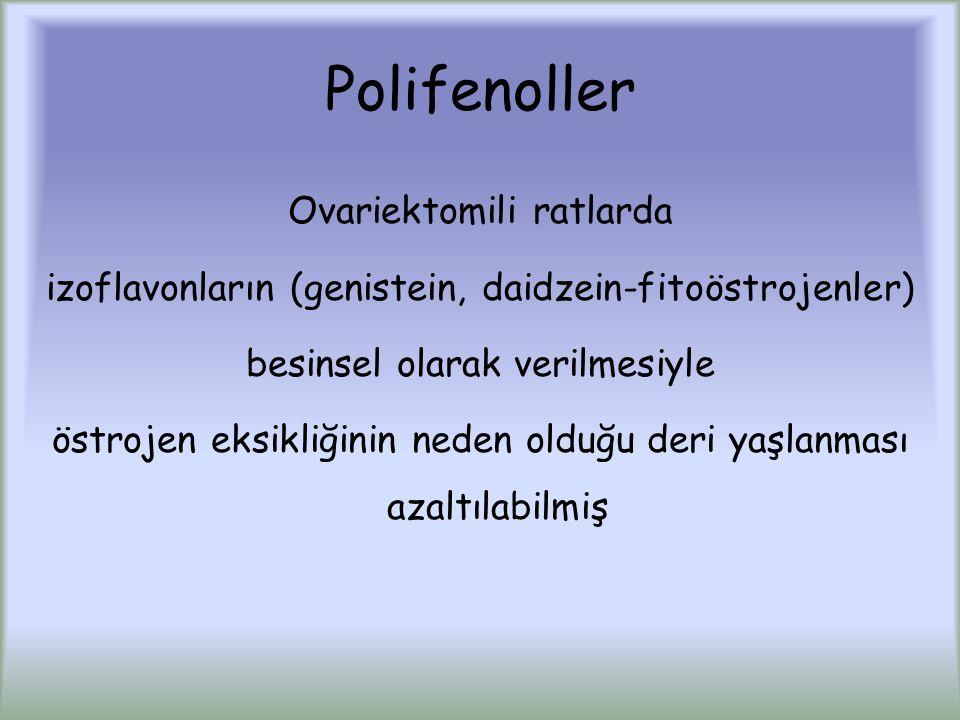 Polifenoller