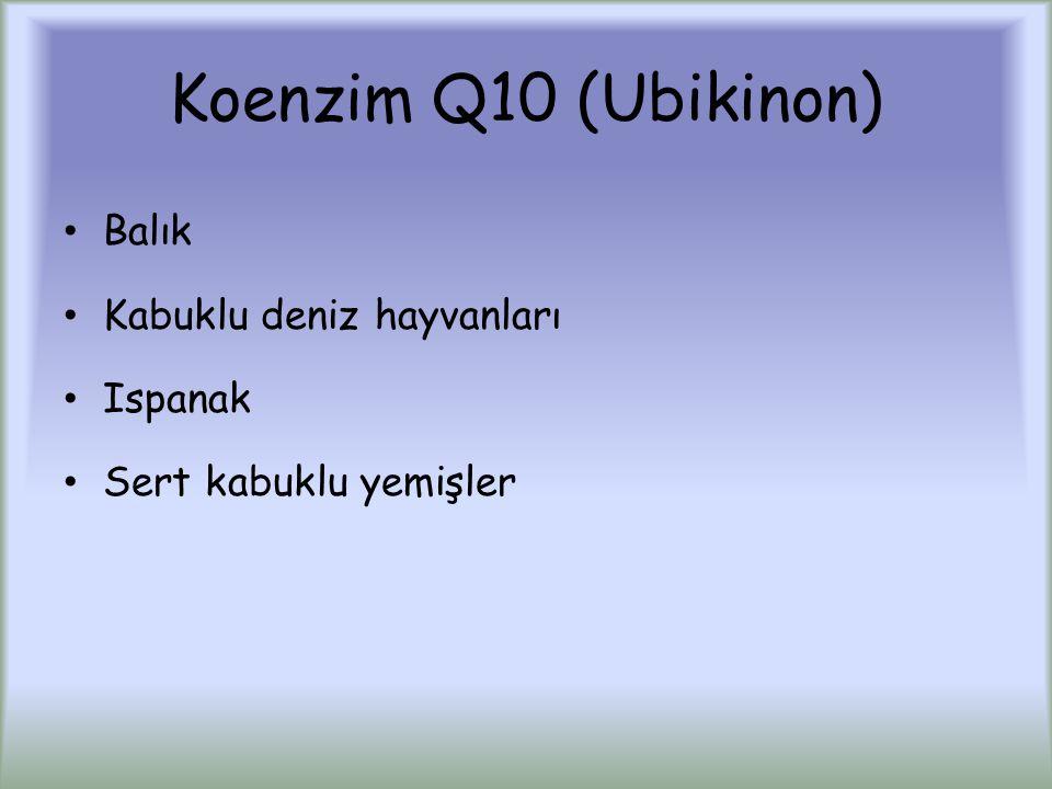 Koenzim Q10 (Ubikinon) Balık Kabuklu deniz hayvanları Ispanak