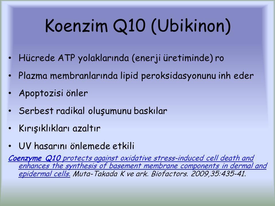 Koenzim Q10 (Ubikinon) Hücrede ATP yolaklarında (enerji üretiminde) ro