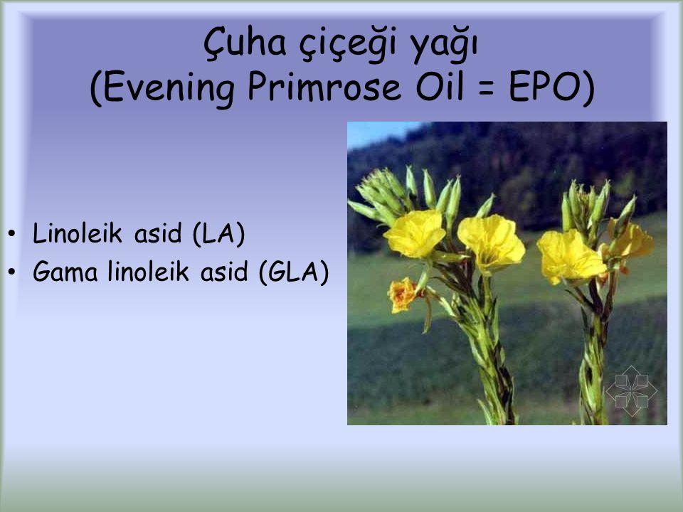 Çuha çiçeği yağı (Evening Primrose Oil = EPO)