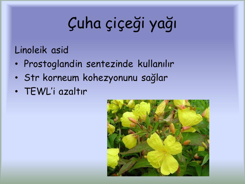 Çuha çiçeği yağı Linoleik asid Prostoglandin sentezinde kullanılır