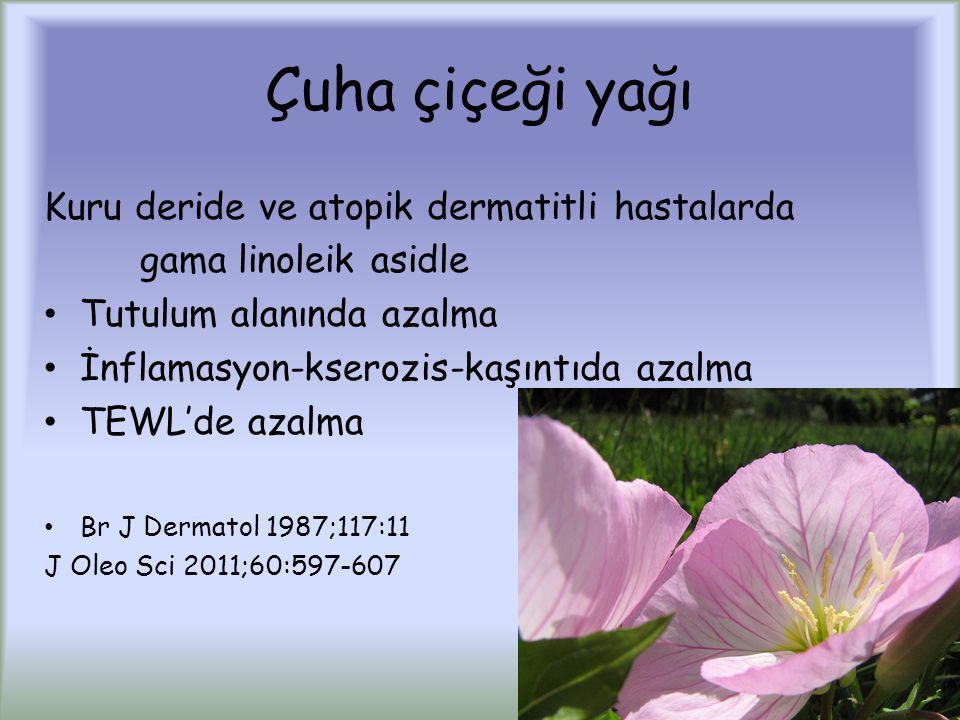 Çuha çiçeği yağı Kuru deride ve atopik dermatitli hastalarda