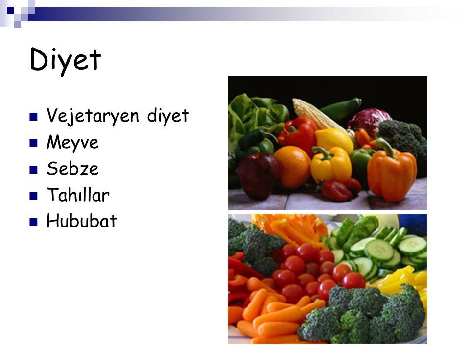 Diyet Vejetaryen diyet Meyve Sebze Tahıllar Hububat