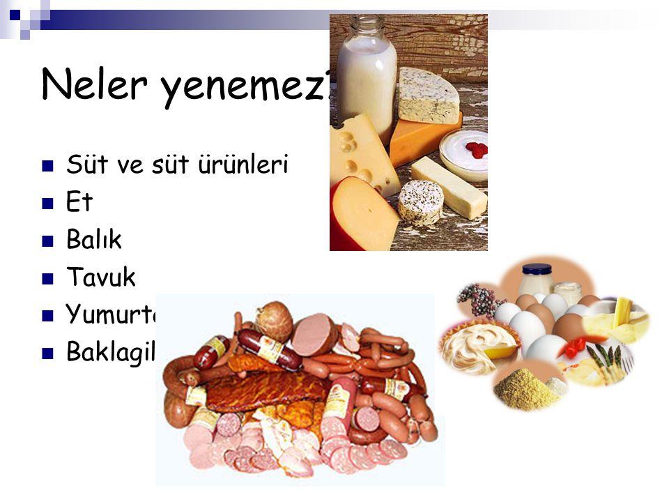 Neler yenemez Süt ve süt ürünleri Et Balık Tavuk Yumurta Baklagil