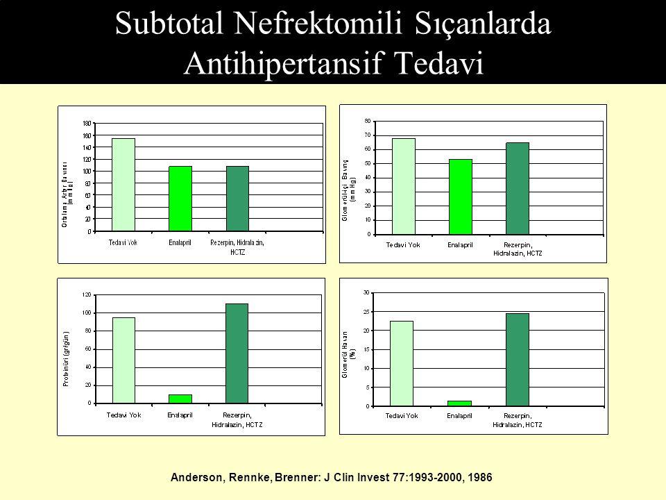 Subtotal Nefrektomili Sıçanlarda Antihipertansif Tedavi