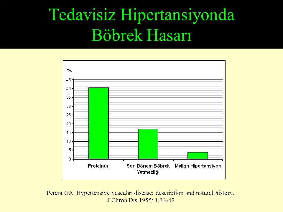 Tedavisiz Hipertansiyonda Böbrek Hasarı