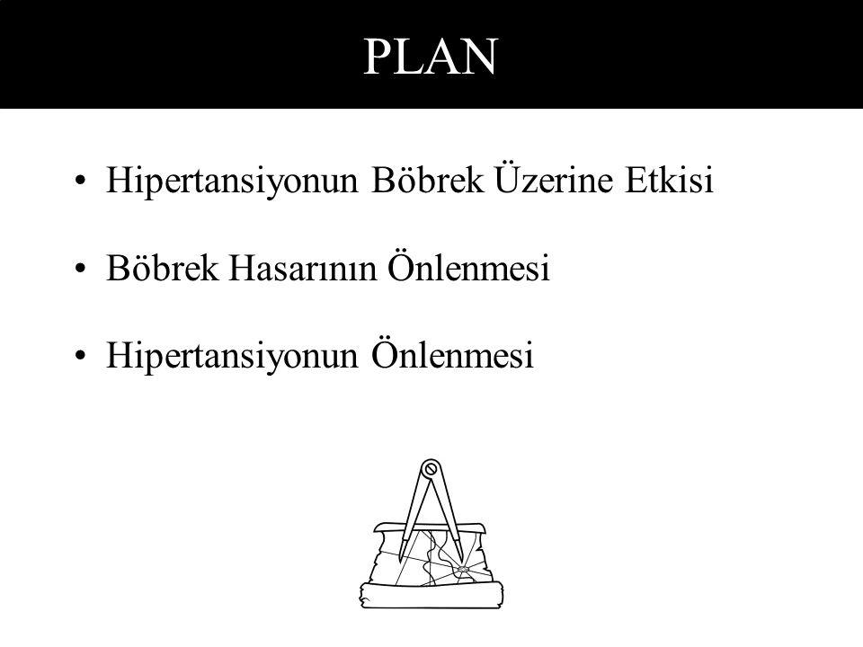 PLAN Hipertansiyonun Böbrek Üzerine Etkisi Böbrek Hasarının Önlenmesi