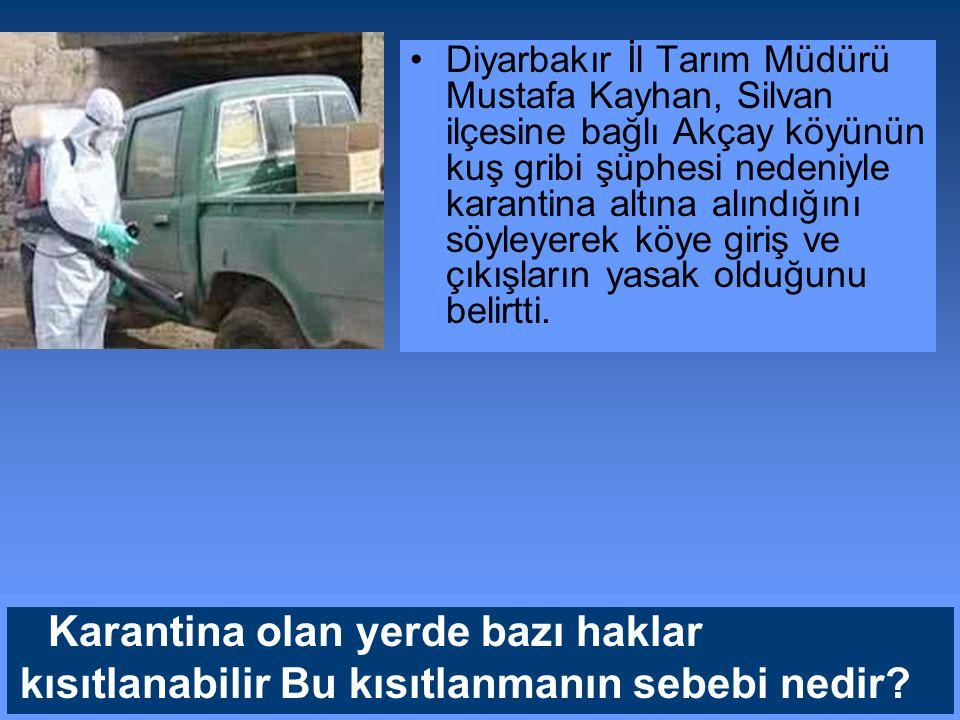 Diyarbakır İl Tarım Müdürü Mustafa Kayhan, Silvan ilçesine bağlı Akçay köyünün kuş gribi şüphesi nedeniyle karantina altına alındığını söyleyerek köye giriş ve çıkışların yasak olduğunu belirtti.