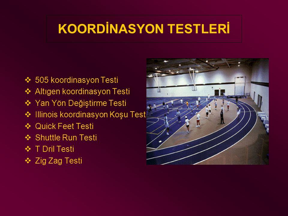 KOORDİNASYON TESTLERİ