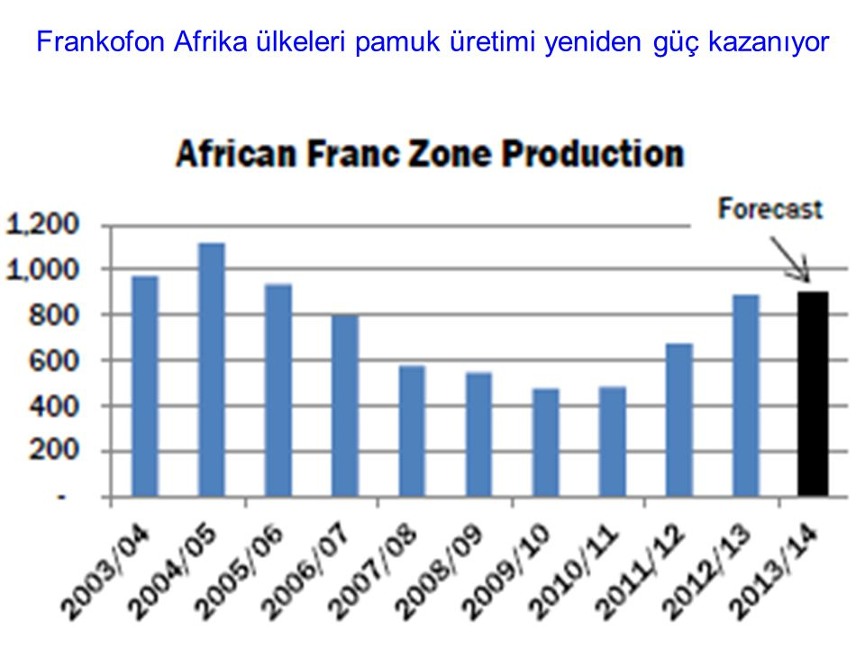 Frankofon Afrika ülkeleri pamuk üretimi yeniden güç kazanıyor