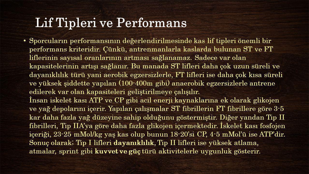 Lif Tipleri ve Performans