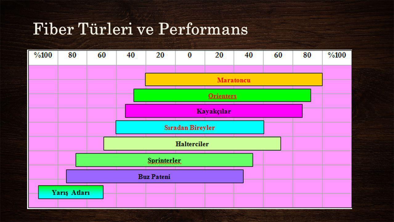 Fiber Türleri ve Performans