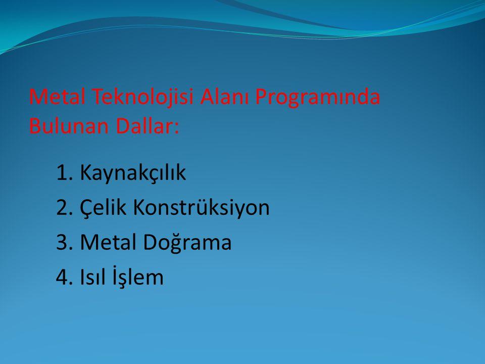 Metal Teknolojisi Alanı Programında Bulunan Dallar: