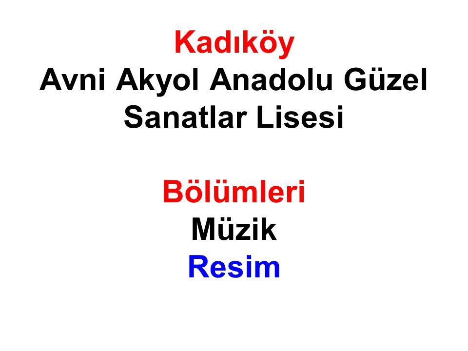 Kadıköy Avni Akyol Anadolu Güzel Sanatlar Lisesi Bölümleri Müzik Resim
