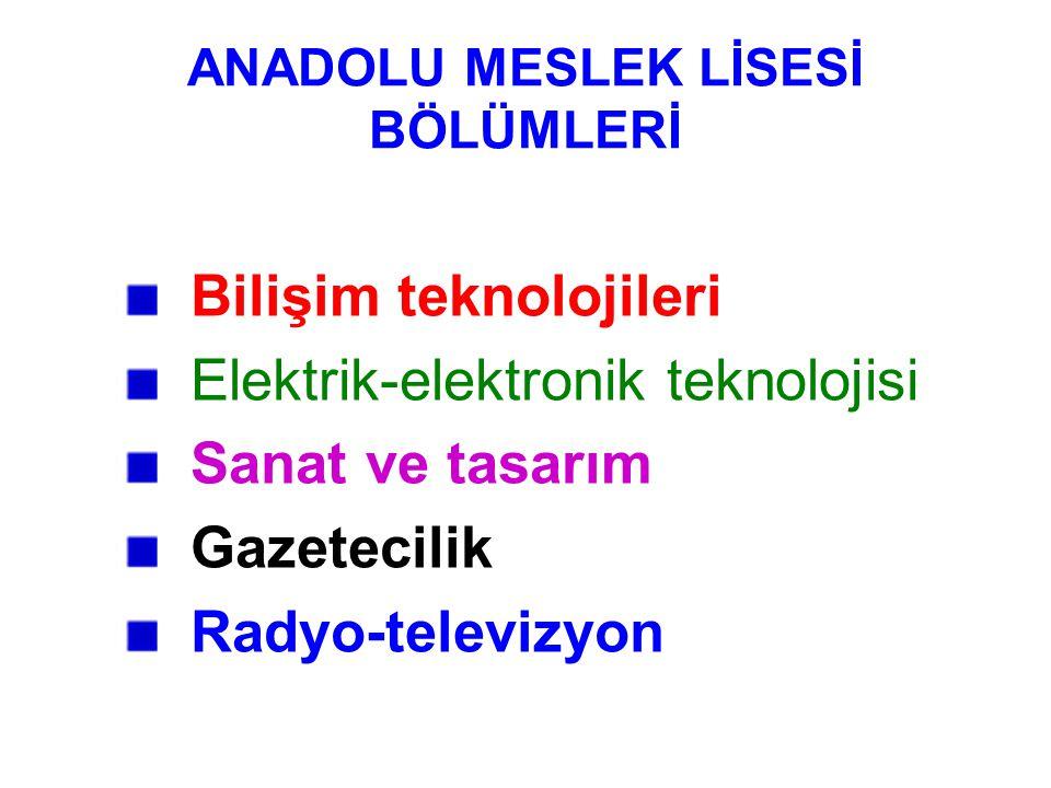 ANADOLU MESLEK LİSESİ BÖLÜMLERİ