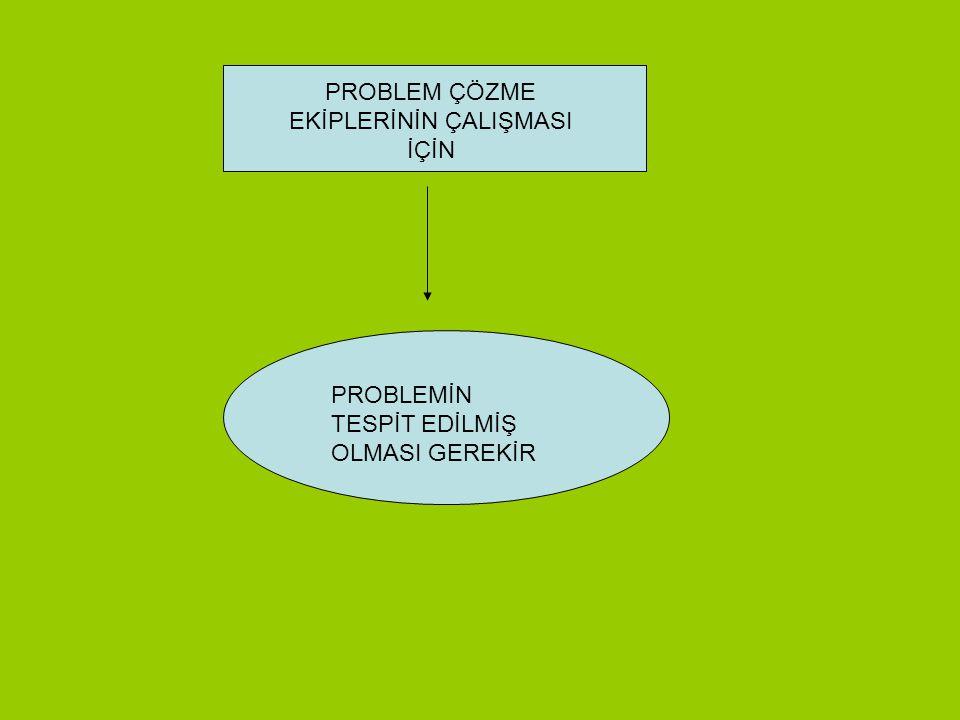 PROBLEM ÇÖZME EKİPLERİNİN ÇALIŞMASI İÇİN