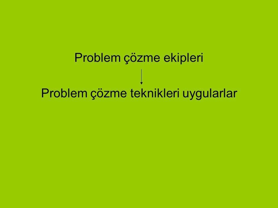 Problem çözme ekipleri Problem çözme teknikleri uygularlar